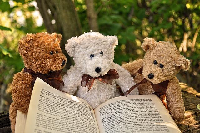 medvídci s knihou