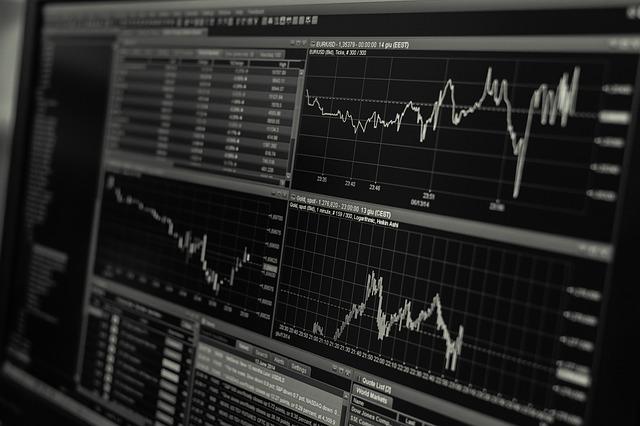 snímek obrazovky s analýzou trhu černobílý