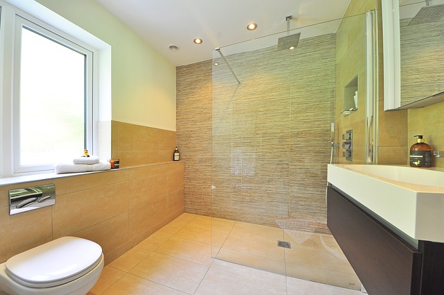zástěna do koupelny na oddělení sprchového koutu.jpg
